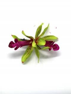 Blumen mit Stoffclip, um Großhandel oder Detail in der Kategorie Bohemian Hippie Fashion Accessoires | zu kaufen ZAS. [ORFLT]